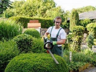 Garten Und Landschaftsbau Theodor Schäfer Berufsbildungswerk